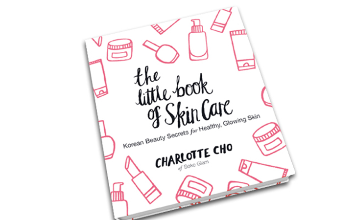 the little book of skincare review
